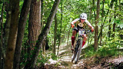 moto  | raznovidnosti gorno velosipednoga 6 | Разновидности горно велосипедного спорта |